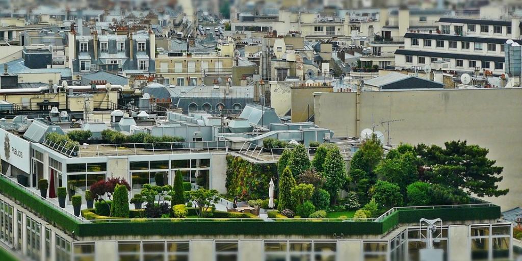 Edificio Jardín